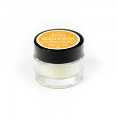 Baume à lèvres au lait d'ânesse biologique Beurre de Karité 15 ml